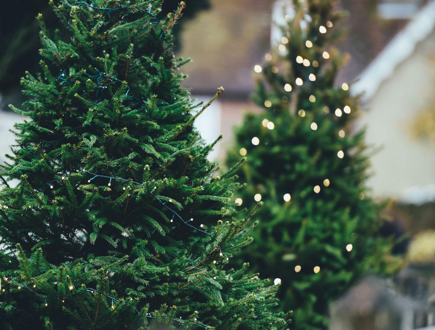 Successful Holiday Social Media Campaigns