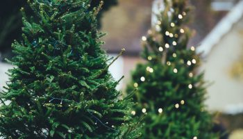 4 Ideas for Successful Holiday Social Media Campaigns